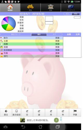 貯まる家計簿の項目一覧