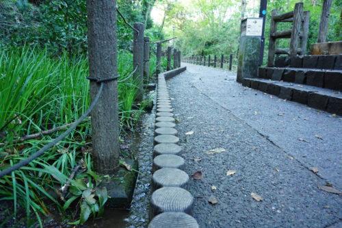小さな水路