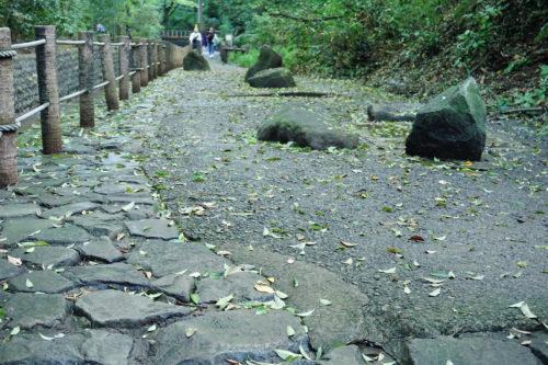 道の真ん中にもさりげなく石