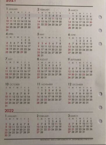 bindex年間カレンダーの写真